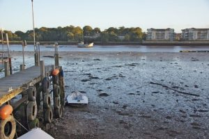 My Jetty at Low Tide